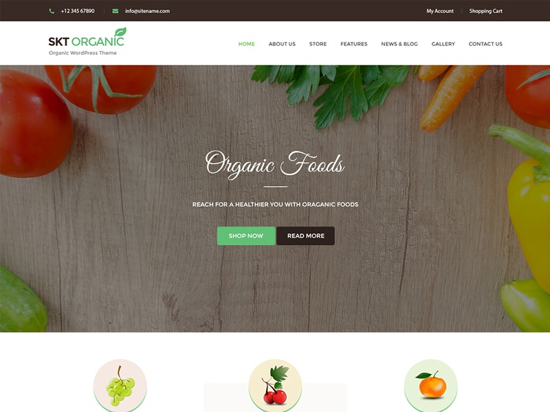 Organic and Healthy Theme & Website Template ux web design wordpress theme wordpress template wordpress development wordpress design website builder theme design
