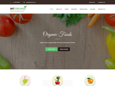 Organic and Healthy Theme & Website Template