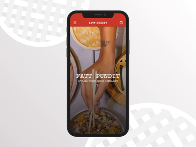 Fatt Pundit Website Concept