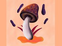 Illustration   Mushroom   On iPad Pro