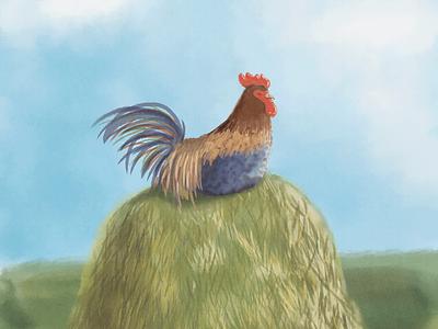 Sunbathing rooster photoshop art photoshop book illustration art illustration childbook