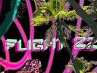 """""""Flight 22"""""""
