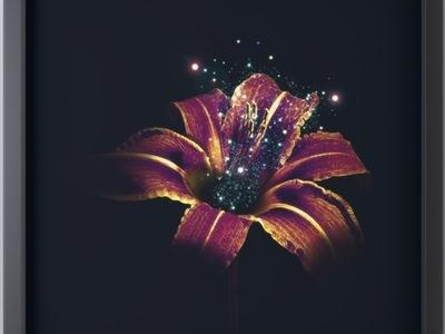 Visual Optics 4 Otherworldly Flower Framed Mini Art Box