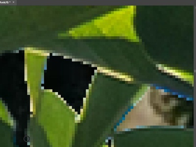 Yay to pixelated foliage