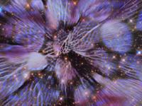 Floral pattern portrait distortion!
