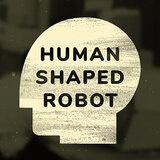 humanshapedrobot