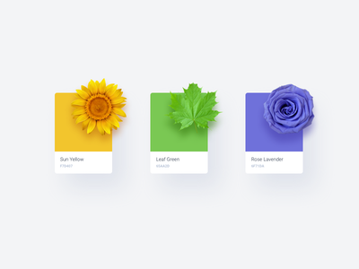 Colors coloring colour natural combination color iconscout