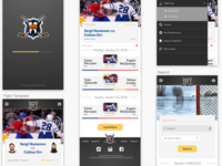 HockeyFights.com Mock UI Design