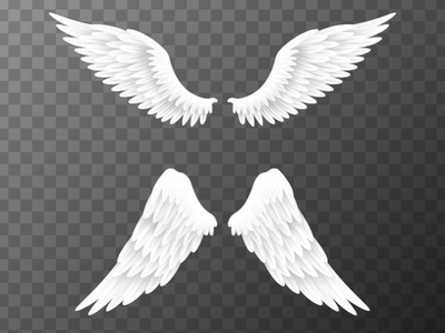 Wings cartoon bright icons gradient illustration vector illustrator design white wingsart wings