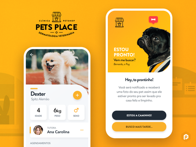 Pet's Place - Branding & Vet App Concept app mobile app mobile yellow branding pug spitz dog veterinary vet petstore pet interface user ui design mobi uiux ui