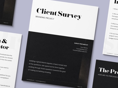 Client Survey   Branding Project branding logo business freelance design freelance contract