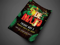 Cinco De Mayo Party Flyer V3  1