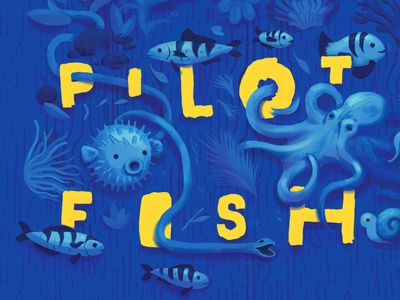 Mystery of the Seventeen Pilot Fish Book Cover
