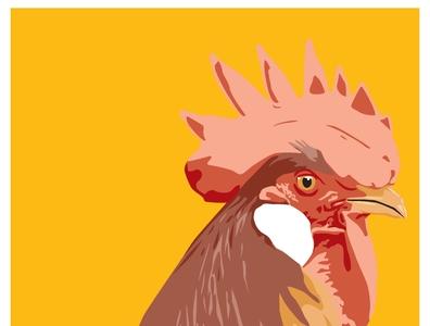 Chicken illustration design chicken poultry poster