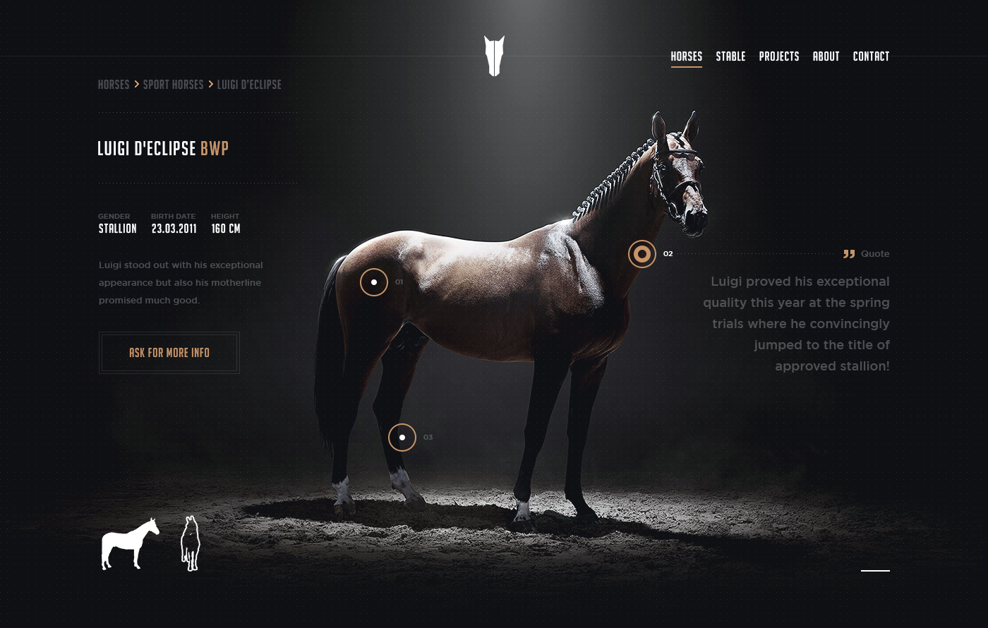 Tms official redesign 001 horse page full hellowiktor
