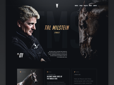 TMS - Homepage ( teaser 02 ) hellowiktor web rider horses tal milstein stables tms