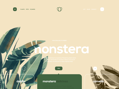 Monstera green navigation store flower layout landing page design clean ux ui website web