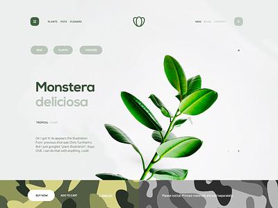Deliciosa camo flower shop plant layout landing page design clean ux ui website web