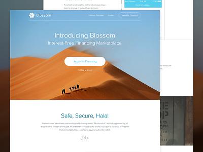 Blossom homepage update ui visual design user interface landing fintech finance web design