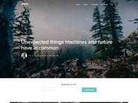 Blog theme home