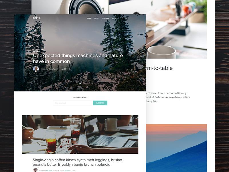 Blog Theme ui visual design web design blog
