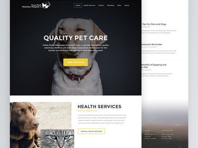 Indian Peaks Veterinary Hospital Homepage wordpress animals blog pets ui veterinary webdesign web design visual design dogs user interface