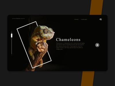 AnimalLandscapes WebPage UI