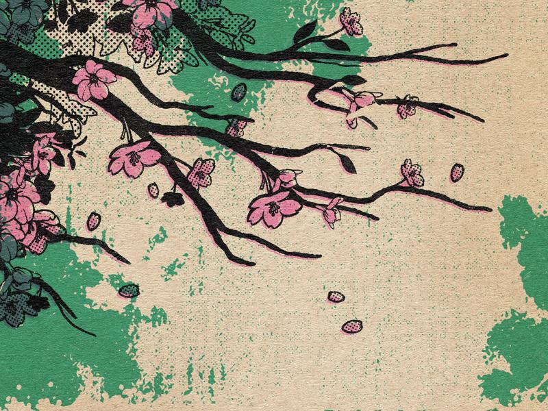 Sakura Part. 1 cherry blossom cherryblossom sakura t-shirt design tattoo logo branding estampe manga retro design graphic art japan graphic japanese design vintage retro paihemestudio paiheme illustration