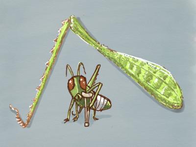 Grasshopper on Crutches