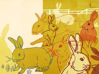 Thomas Austin and the Rabbits