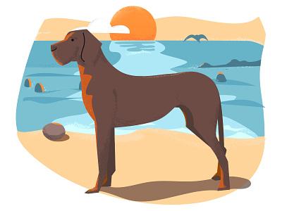 Dog on a beach photoshop illustrator animal 2d vector illustration dog ocean water beach sunset textures playingaround
