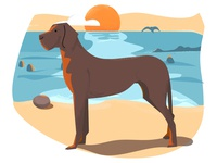 Dog on a beach photoshop illustrator animal 2d vector illustration dog ocean water beach sunset textures playingaround