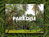 Day 61: Paradise Website