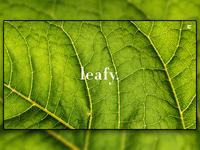 Day 107: Leafy Minimal Landing Page