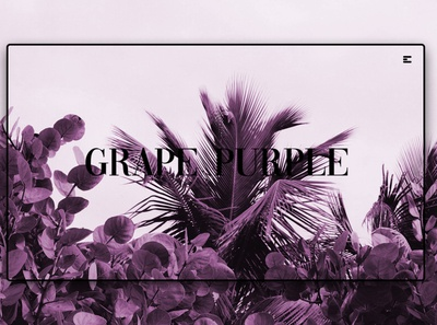 Day 207: Grape Purple.