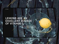 Promo lemon concept