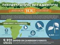 Green Cameroon Infographic