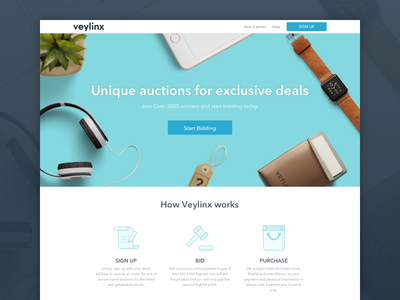 Veylinx Landing Page illustrations sketch design ui ux flat minimal clean icons website landing page