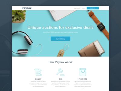 Veylinx Landing Page