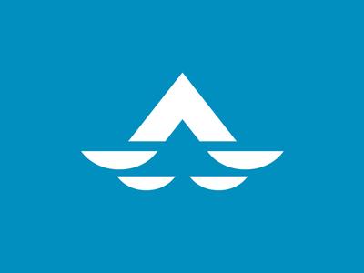 Aerial Inspirations Logo drone icon branding typography concept type vector design brand identity logo