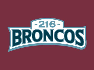 216 Broncos Wordmark Logo typography illustration sports vector design identity brand logo hockey