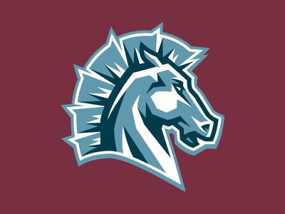 216 Broncos Icon Logo