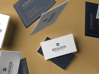 BRAGHIN BUSINESS CARD