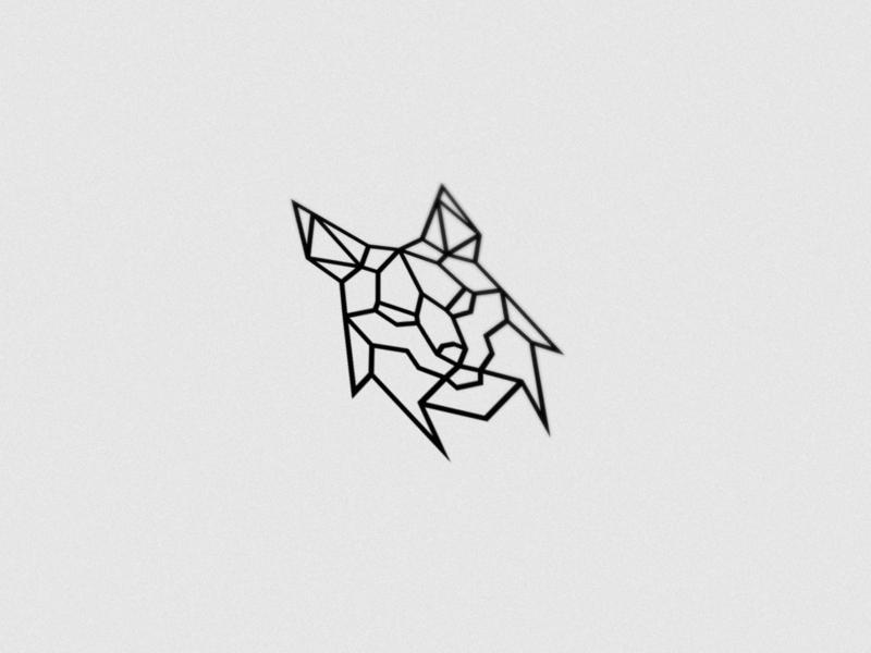 Lynx - Meliora Recordings
