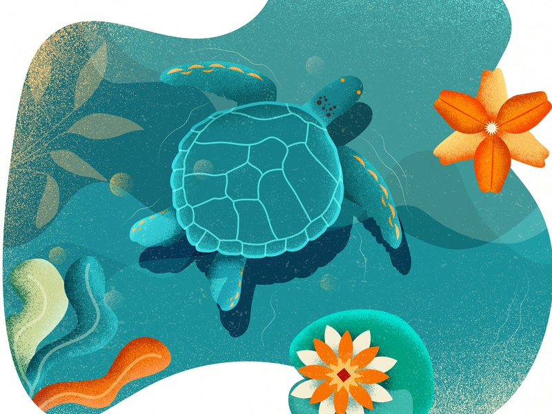Turtle landscape natural flowers lotus lac nature design colorful vector illustration