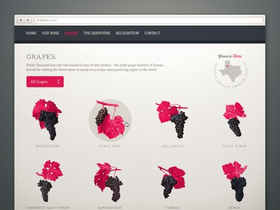 Reddy Vineyards wine vines grapes winery webdesign website