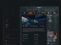 Interface: Tournament page