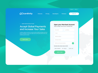 Cardinity Payment Service UI&UX repiano pay paypal merchant stripe credit debt online payment ux ui startup ecommerce payment