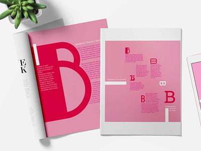 BB in Bern poster typography vector design