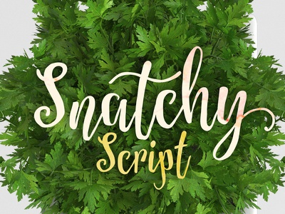Snatchy Script vintage script cursive hand drawn hand lettering calligraphy modern natural humanis elegant wedding invitaion hand made